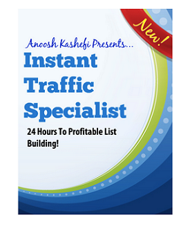 instant-traffic-specialist