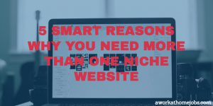 5 Smart Reasons Why You Need More Than One Niche Website
